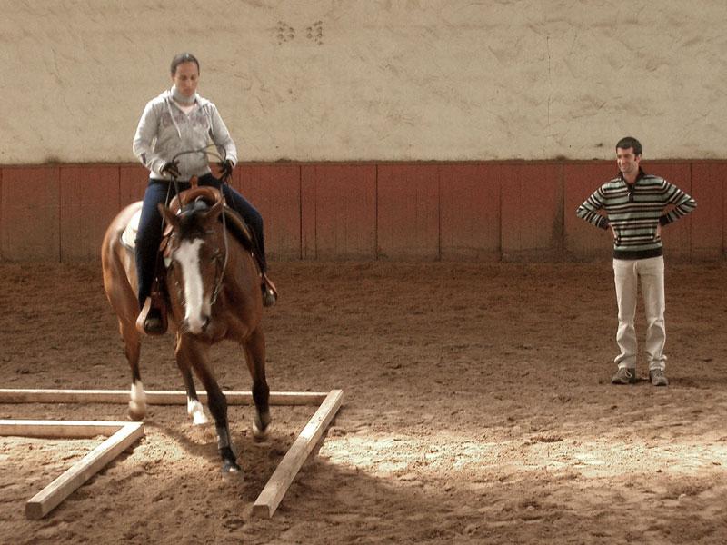 westernreitsport-rabia-bakri-reitunterricht